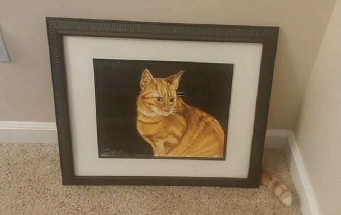 кошка за картиной